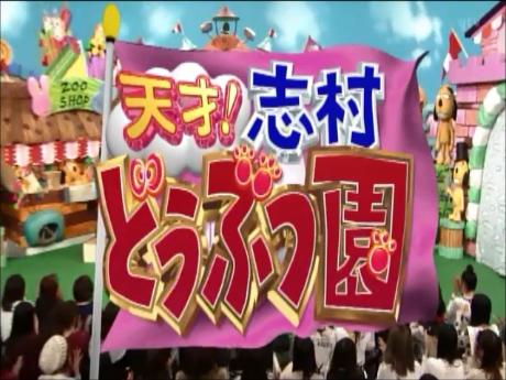 天才!志村どうぶつ園 2015年3月14日 登場