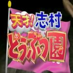 天才!志村どうぶつ園(2015年10月10日放送)